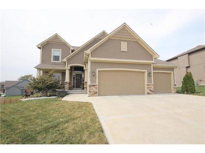 Kansas City Single Family Home For Sale: 9738 N Elm Avenue