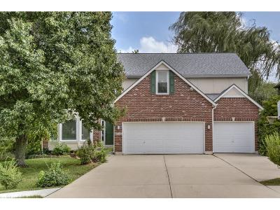 Lee's Summit Single Family Home For Sale: 1149 SW Sunflower Drive