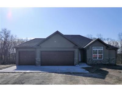 Single Family Home For Sale: 9169 Alpha Ridge Road