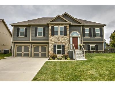 Kansas City Single Family Home For Sale: 7506 NE 109th Street