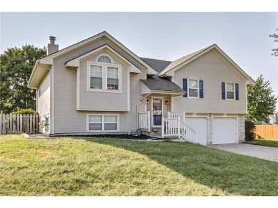 Lee's Summit Single Family Home For Sale: 1208 NE Coronado Court