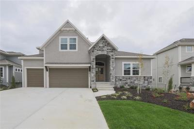 Overland Park Single Family Home For Sale: 9011 W 165 Terrace