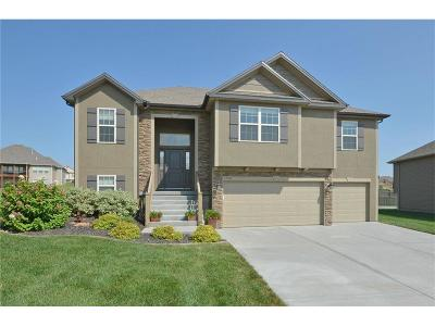 Platte City Single Family Home For Sale: 17110 NW 132nd Circle