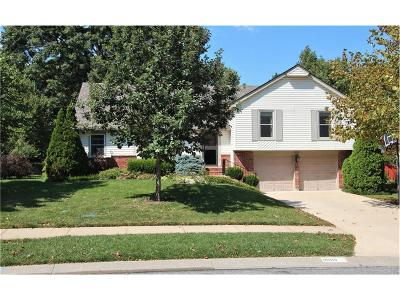 Lenexa Single Family Home For Sale: 10010 Caenen Drive