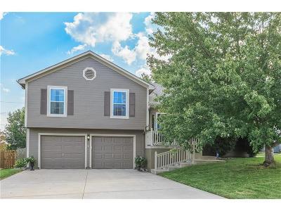 Kansas City Single Family Home For Sale: 7419 N Lewis Avenue
