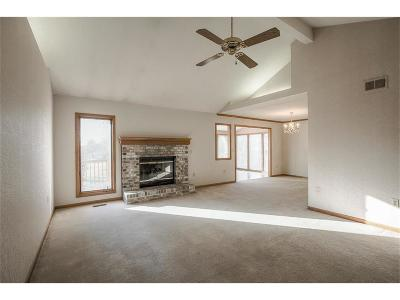 Lee's Summit Single Family Home For Sale: 221 SW Seagull Street