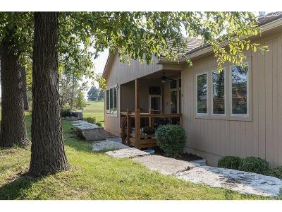 Lee's Summit MO Single Family Home For Sale: $349,900