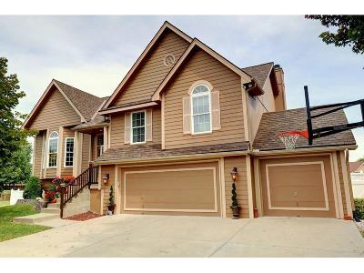 Kansas City Single Family Home For Sale: 9927 N Highland Terrace