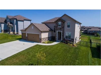 Warrensburg Single Family Home For Sale: 1229 Rich Boulevard