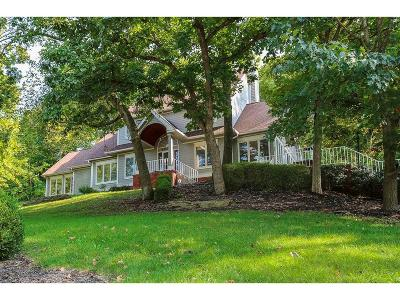 Johnson-KS County Single Family Home For Sale: 20701 Mill Road