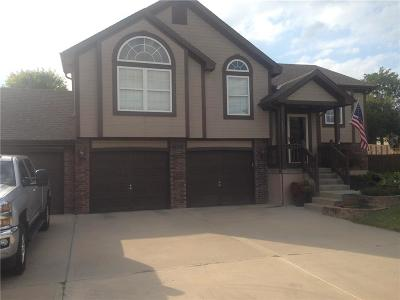 Raymore MO Single Family Home For Sale: $269,900