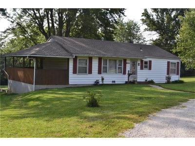 Kansas City Single Family Home For Sale: 901 88th Street