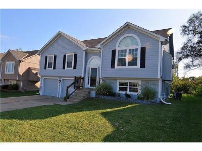 Kansas City Single Family Home For Sale: 11219 N Lewis Avenue