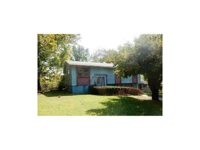 Knob Noster Single Family Home Auction: 633 Valley Hill Drive