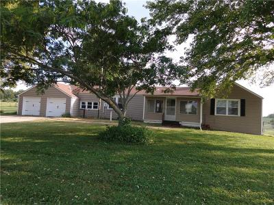 Pleasant Hill MO Single Family Home For Sale: $179,900