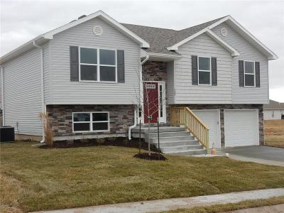 Knob Noster Single Family Home For Sale: 1508 6th Street