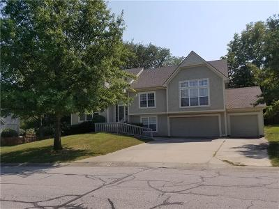 Shawnee Single Family Home For Sale: 13907 W 58th Place