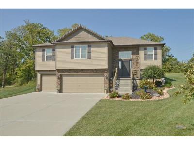 Smithville Single Family Home For Sale: 600 Tomahawk Court