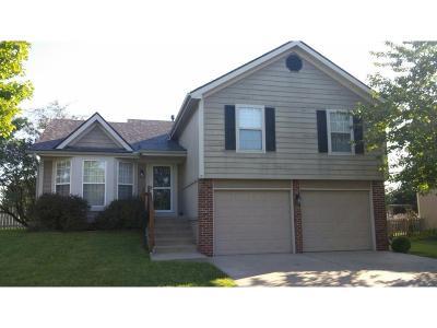 Smithville Single Family Home For Sale: 14623 Shamrock Way