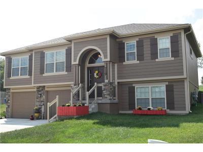 Kearney Single Family Home For Sale: 719 E 13th Court