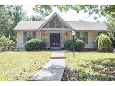 Lee's Summit MO Single Family Home For Sale: $125,000