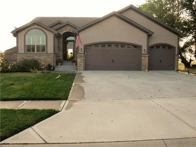 Spring Hill Single Family Home For Sale: 19429 New Castle Street