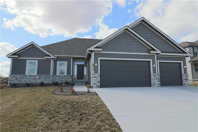 Blue Springs Single Family Home For Sale: 8213 SE 5th Street