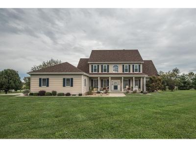 Harrisonville MO Single Family Home For Sale: $434,900