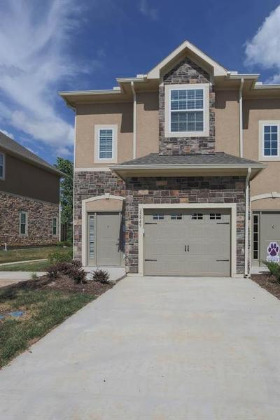 Overland Park Condo/Townhouse For Sale: 15849 Valley View Drive