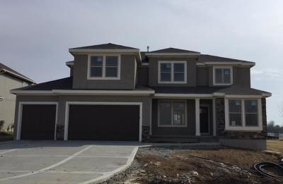 Lenexa Single Family Home For Sale: 24511 W 79th Court
