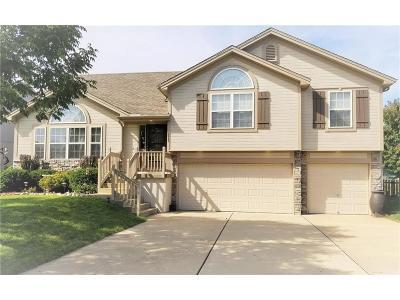 Blue Springs Single Family Home For Sale: 2217 NE 23rd Street