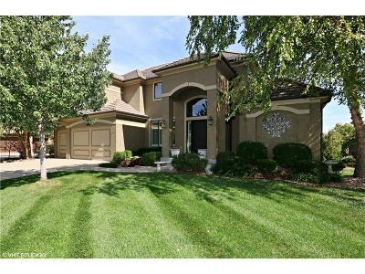 Lenexa Single Family Home For Sale: 8827 Pine Street