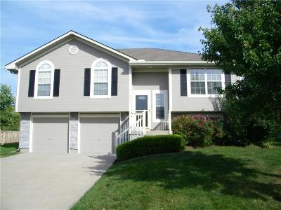 Raymore MO Single Family Home For Sale: $189,900