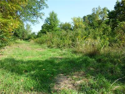 Wyandotte County Residential Lots & Land For Sale: 6028 Georgia Avenue