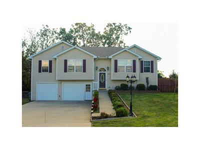 Warrensburg Single Family Home For Sale: 574 SE 115 Road