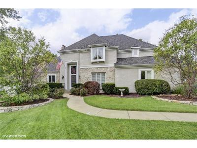 Overland Park Single Family Home For Sale: 3900 W 101st Terrace