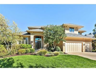 Overland Park Single Family Home For Sale: 16101 Barton Street