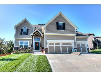 Kearney Single Family Home For Sale: 1103 E 15th Street
