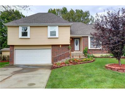 Olathe Single Family Home For Sale: 1406 S Sheridan Bridge Place