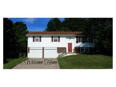 Warrensburg Single Family Home For Sale: 1017 S Holden Street