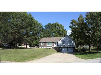 Platte City Single Family Home For Sale: 39 Gates Drive