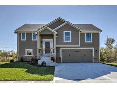 Kearney Single Family Home For Sale: 913 W 7th Avenue