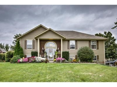 Raymore MO Single Family Home For Sale: $224,900