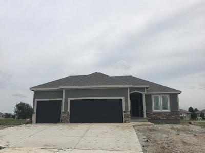 Kearney Single Family Home For Sale: 2059 Foxtail Point