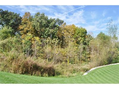 Platte County Residential Lots & Land For Sale: Lot 19 1st Plat, National Drive