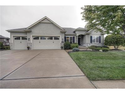 Raymore MO Single Family Home For Sale: $399,000