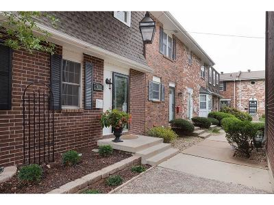 Overland Park Condo/Townhouse Show For Backups: 9615 Perry Lane