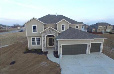 Olathe Single Family Home For Sale: 20425 W 107 Terrace
