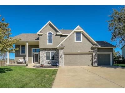 Gardner Single Family Home Contingent: 529 S Plum Creek Drive
