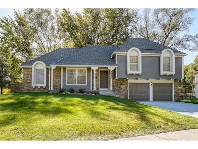 Overland Park Single Family Home For Sale: 7901 W 96th Street